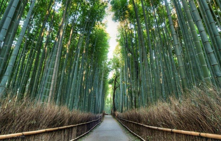 Достопримечательности Киото, изображение №3