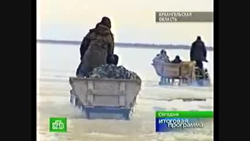НТВ о поморах. Итоговая программа СЕГОДНЯ, НТВ, эфир 18.04.2010 _ NTV about Pomo