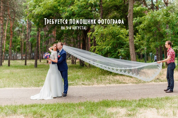 поиска требуется ассистент фотографа на свадьбу нового