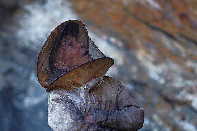 Сбор дикого мёда в Непале, изображение №2