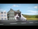 Cyriak -Welcome to Kitty City