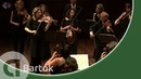 Bartók Divertimento for String Orchestra Amsterdam Sinfonietta led by Candida Thompson Live HD