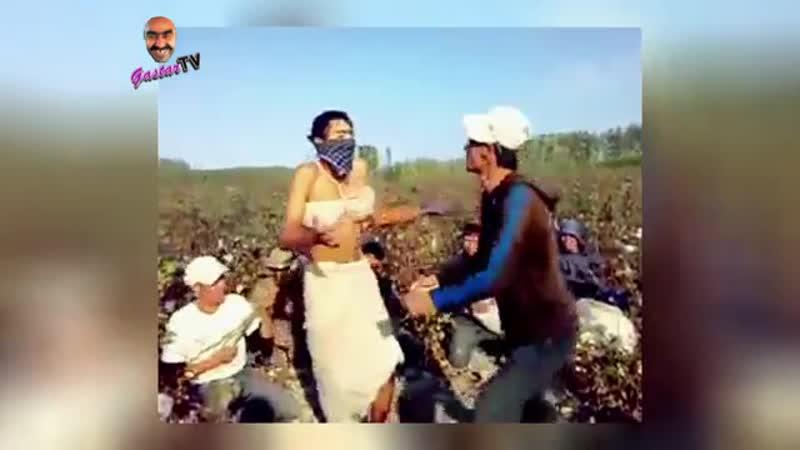 Как прикалываются узбекские хлопкоробы