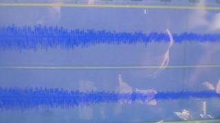 ЁжЖЖ  Запись звука и анализ спектра излучений в Audacity,#стандарты и единицы измерения #ЭМИ