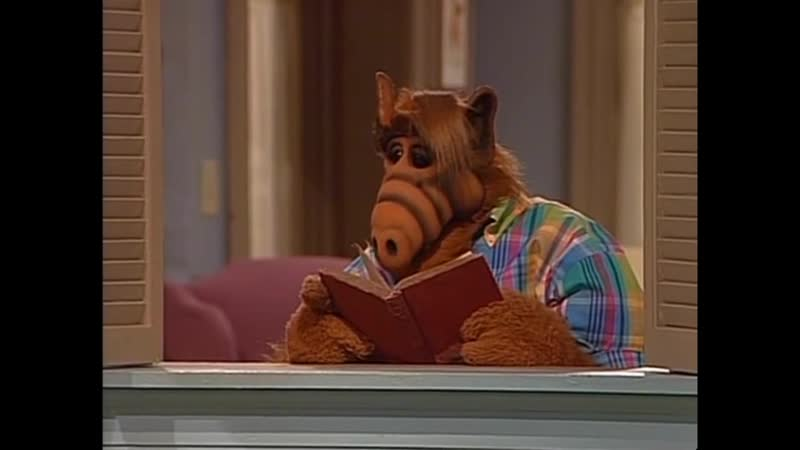 Alf Quote Season 3 Episode 18 Поцелуй