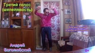 Ну ты и дал!!! *** Выступление на три голоса - песня от Андрейки Боголюбского