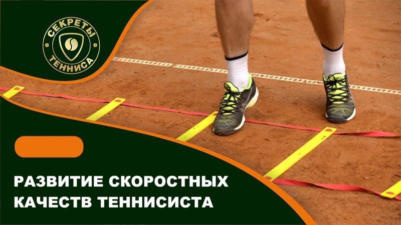 Развитие скоростных качеств теннисиста ОФП СЕКРЕТЫ БОЛЬШОГО ТЕННИСА