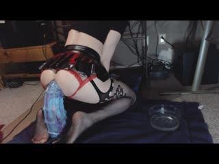 Seahorse grandmaster anal training