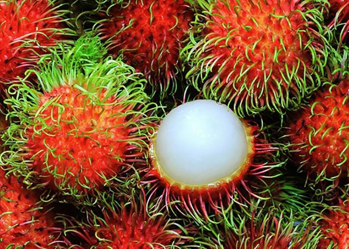 Экзотические фрукты, изображение №4