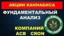 Инвестирование в акции Фундаментальный конопляных компаний ACB и CRON Зарубежный фондовый рынок