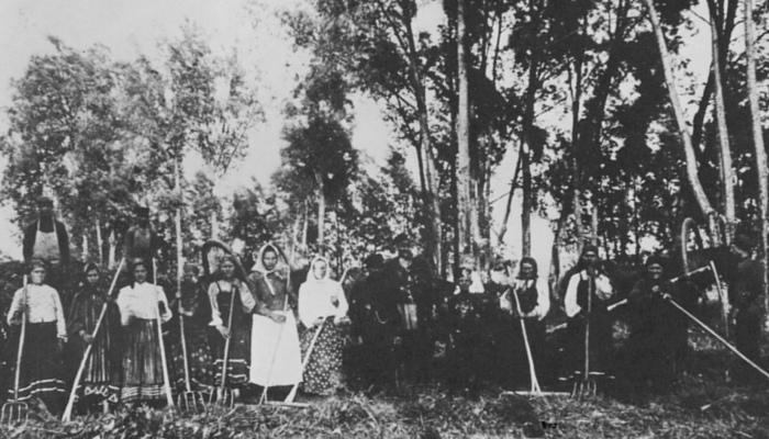 До 1907 года в крестьянские руки было продано при посредстве Крестьянского банка земель на сумму 675 млн рублей, из них в ссуду — на сумму 516 млн.