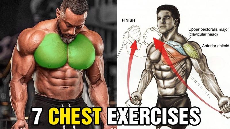 7 Bài Tập Xây Dựng Cơ Ngực Bạn Không Thể Bỏ Qua