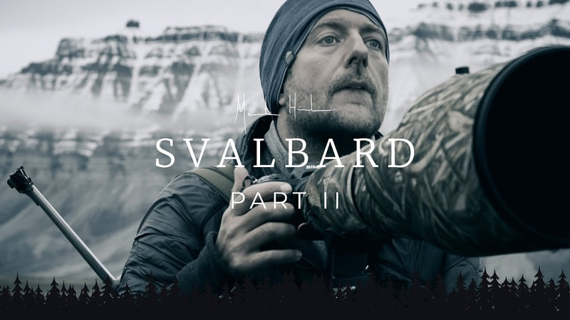 SVALBARD Photo Adventure - part 2 | remote solo camping and wildlife photography behind the scenes