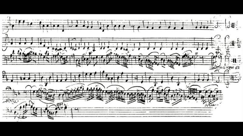 Giuseppe Tartini - Concerto per Violoncello in Re, Grave, Petr Skalka - LIVE