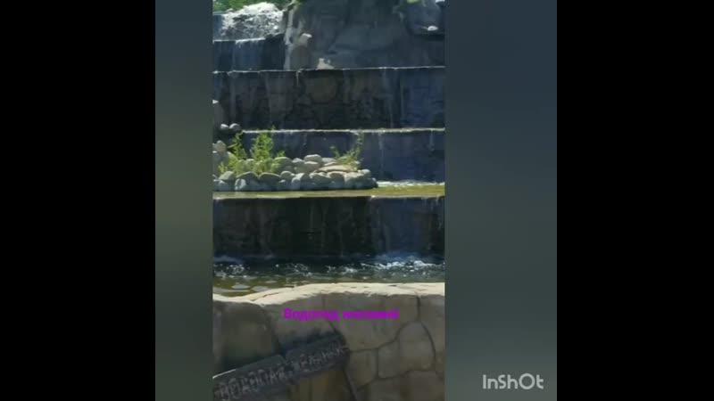 Водопад желаний mp4