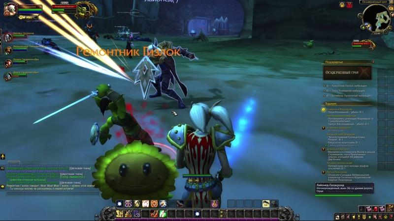 Паладинчик Вам не блинчик 7 World of Warcraft Мародон оскверненный грот прохождение Паладин