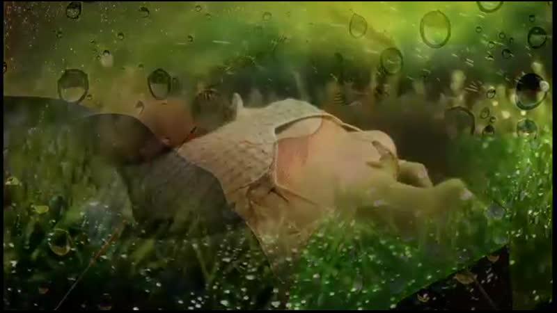 Анатолий Днепров Любимой женщине сборник видеоклипов