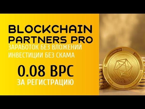 Когда начислят 0 08 BPC за регистрацию и начнутся выплаты дивидендов Blockchain Partners Pro