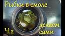 Рыбки застывшие в смоле - ч.2