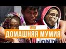 Жизнь как триллер - народ Тораджа, церемония манене. Индонезия, Сулавеси