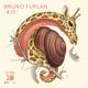 Bruno Furlan - Dinamo