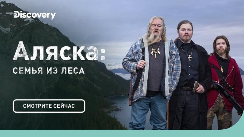 Лес и комфорт Аляска семья из леса Discovery
