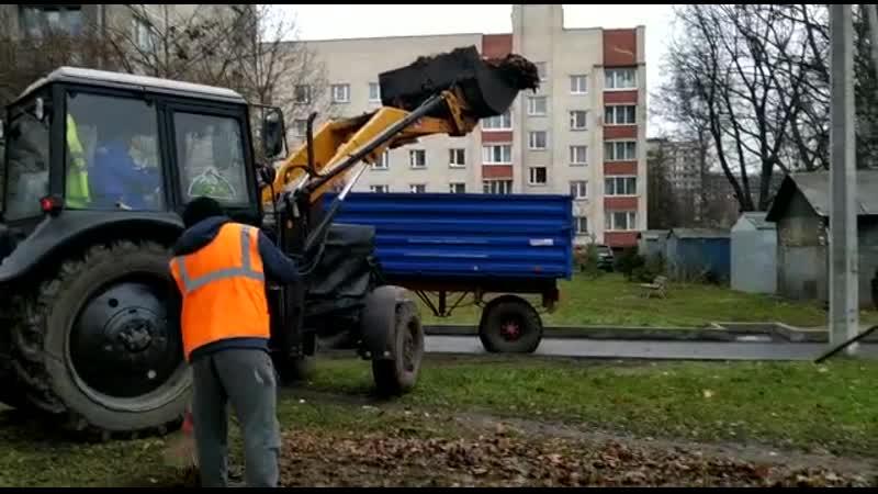 Уборка и вывоз листвы с газонов