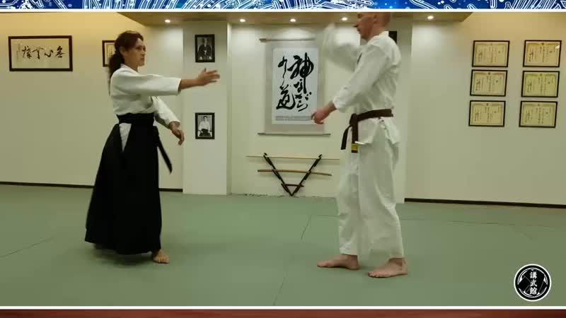 Aikido vzr 2019
