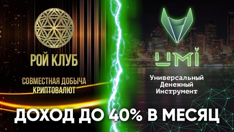#РОЙКлуб и #UMI — доход до 40% в месяц l Эпохальный союз нового десятилетия