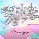 ЧИСЛО ДУШИ - 7 КЕТУ 8 САТУРН 9 МАРС