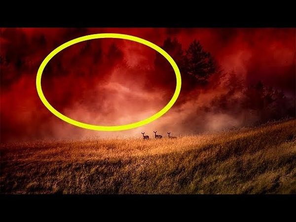 Очевидцы описали мистическое природное явление, которое не поддается объяснению