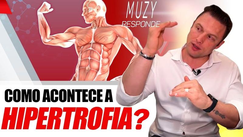 COMO ACONTECE A HIPERTROFIA MUSCULAR? | MUZY RESPONDE