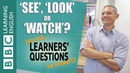 'See', 'look' and 'watch' - Learners' Questions