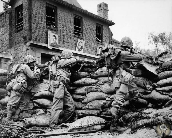 Корейская война: бессмысленная бойня (1950  1953)