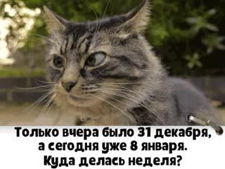 Зачем вы смотрите на даты Ведь праздник должен быть в душе)))