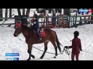 В Новомосковске прошли первые городские соревнования по конному спорту