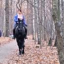 Сегодня я совершила конную прогулку в лесопарке Кусково