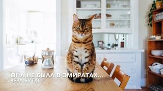"""""""Ей не с кем оставить кота"""". Песня на стихи Веры Бутко """"Она не была в Эмиратах..."""""""