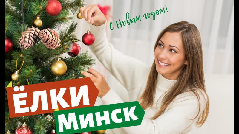 Где купить искусственная елка в Минске Беларусь Гродно Барановичи