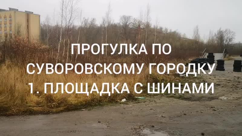 Площадка с шинами у Суворовского городка 16.11.19