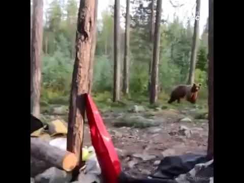 мантра изгоняюшчая медведяф Картина маслай