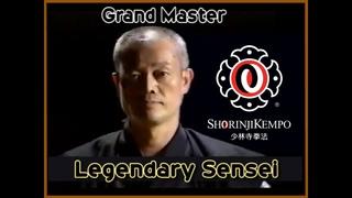Legendary Master, Sensei Yamasaki Hiromichi, 7 Dan Shorinji Kempo. Martial Arts. 少林寺拳法