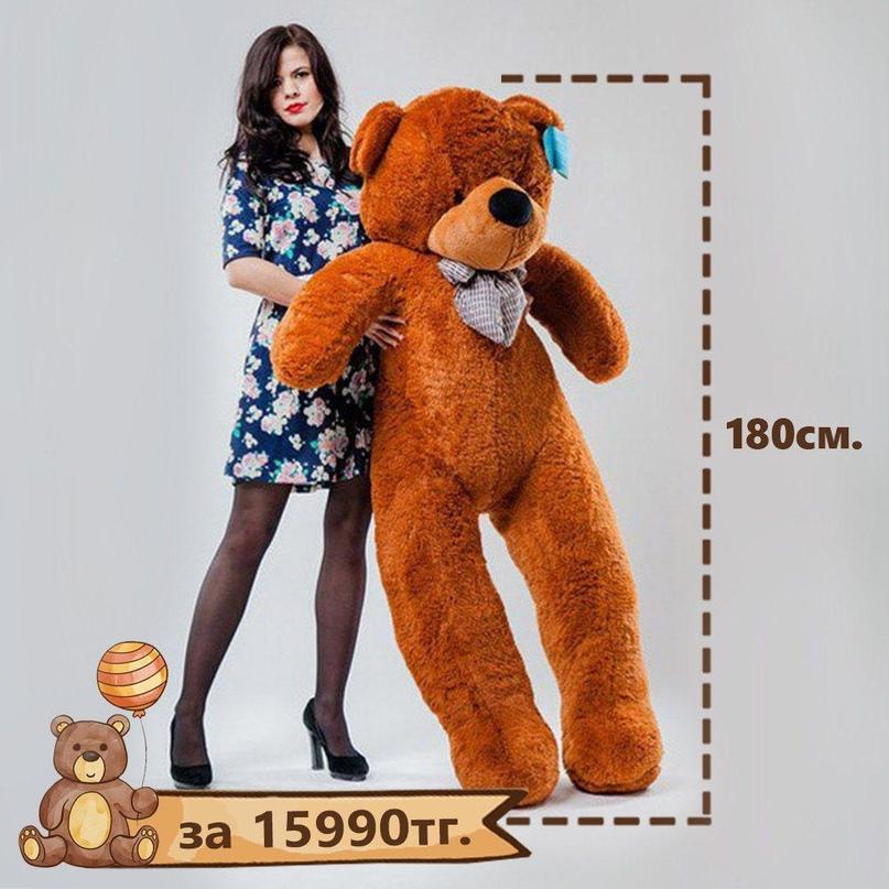 Плюшевый медведь «NESTOR»