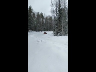 Видео от Ванько Беличева