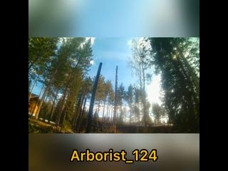 Спил деревьев частями 🌳🪵 8-933-332-10-66