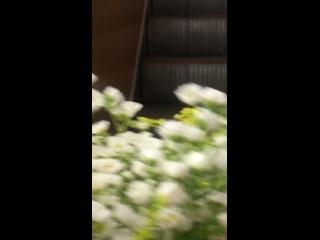 Video by Evgenia Gribovskaya