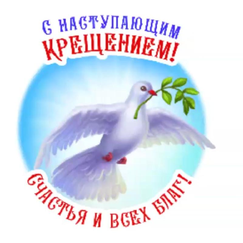 Видео от Вероники Воронцовой