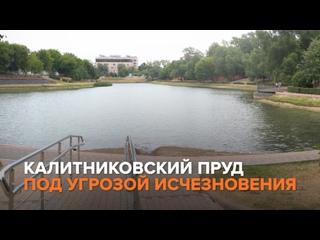 Олег Леонов - Калитниковский пруд под угрозой исчезновения