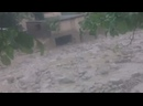 Видео от Азия-Плюс Все новости Таджикистана