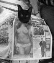 Личный фотоальбом Алексея Ходченкова